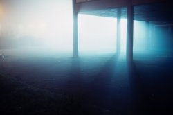Night Fog-5.jpg
